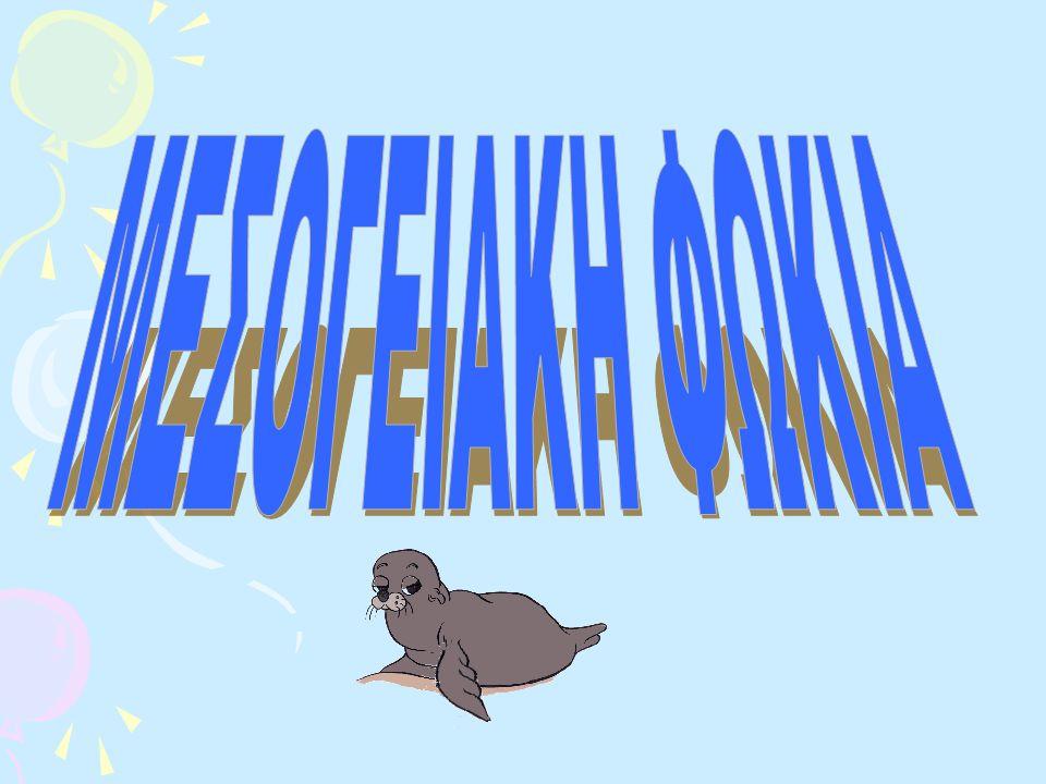 Μετάβαση σε: πλοήγηση, αναζήτησηπλοήγησηαναζήτηση Μεσογειακή φώκια Κατάσταση διατήρησης Κινδυνεύει άμεσα με αφανισμό (IUCN 3.1) Κινδυνεύει άμεσα με αφανισμόIUCN 3.1 Συστηματική ταξινόμηση Διώνυμο Monachus monachus (Hermann, 1779)Hermann Περιοχή εξάπλωσης της μεσογειακής φώκιας Η μεσογειακή φώκια μοναχός (Monachus monachus), είναι το ένα από τα δύο εναπομείναντα είδη φώκιας μοναχού της οικογένειας των φωκιδών.