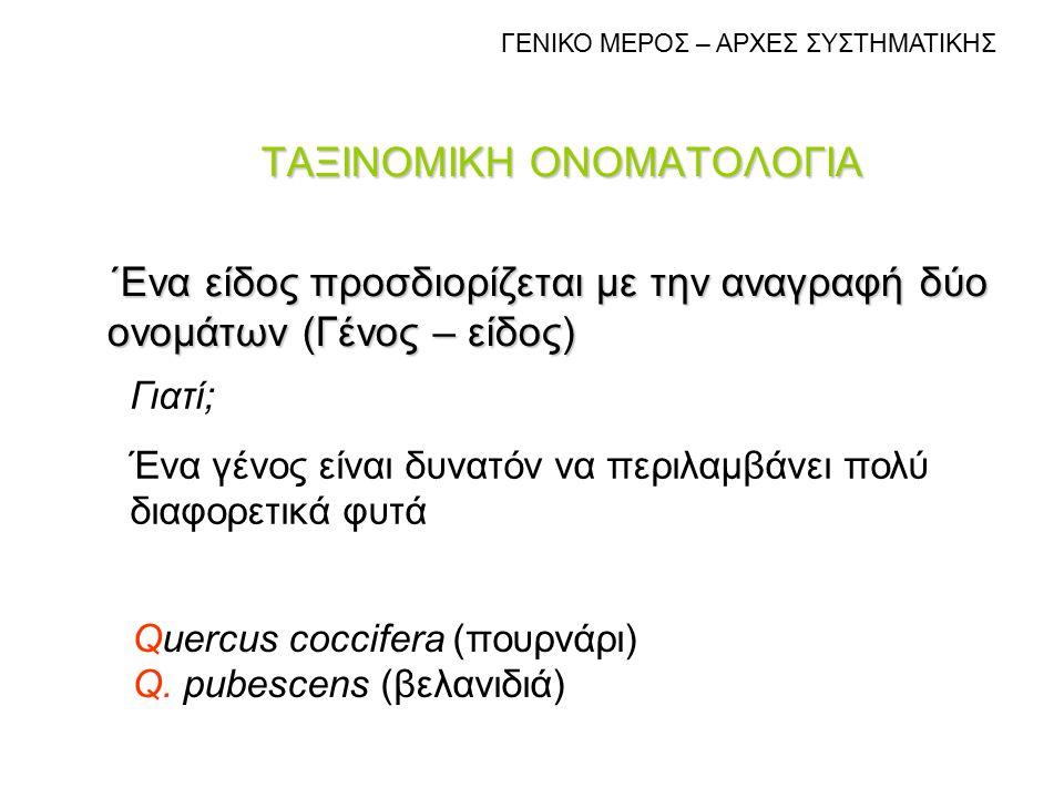 ΤΑΞΙΝΟΜΙΚΗ ΟΝΟΜΑΤΟΛΟΓΙΑ ΄Ενα είδος προσδιορίζεται με την αναγραφή δύο ονομάτων (Γένος – είδος) Quercus coccifera (πουρνάρι) Q. pubescens (βελανιδιά) Γ