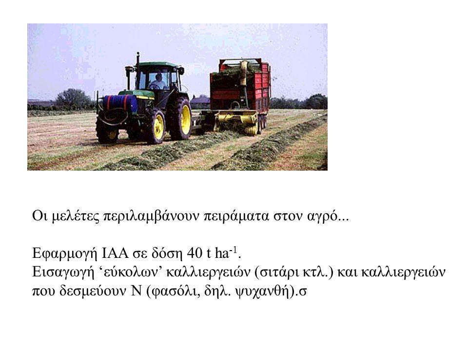 Οι μελέτες περιλαμβάνουν πειράματα στον αγρό...Εφαρμογή ΙΑΑ σε δόση 40 t ha -1.