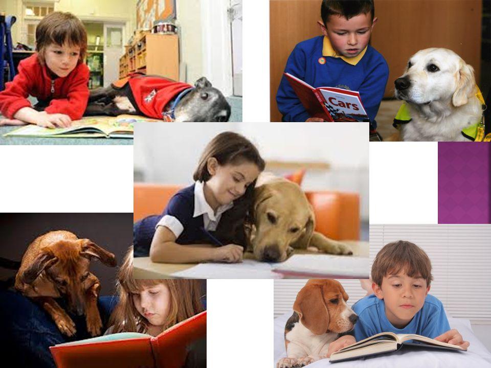 «Ο καλύτερος φίλος του ανθρώπου, εκτός του σκύλου, είναι το βιβλίο.