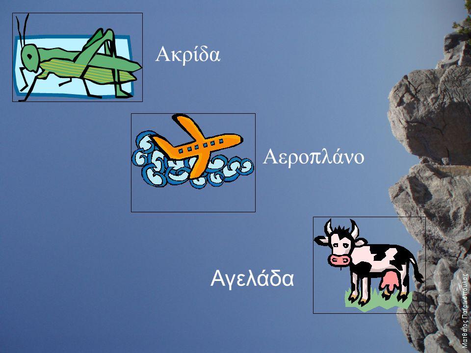 Ακρίδα Αερο π λάνο Αγελάδα Ματθαίος Πατρινόπουλος