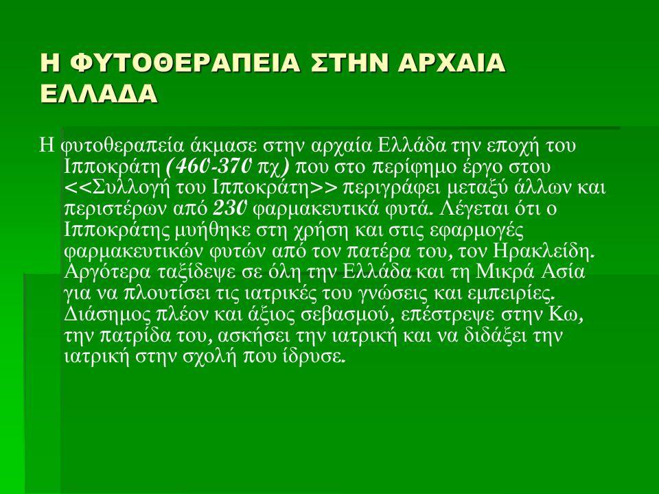  Βότανα της πατρίδας μας (φάρμακα, τρόφιμα, καλλυντικά)  Υπεύθυνη εκπαιδευτικός : ΠΕ 18.16  Υπεύθυνη εκπαιδευτικός : Βαβλιάρα Νίκη ΠΕ 18.16  Μαθητές της Α Λυκείου που συμετείχαν:   Σεραφείμ   Κατερίνα   Μαρία   Ντίνα   Χαρά   Μαρία   Έλενα   Πάνος   Ανθή   Χρύσα   Κωνσταντίνα   Τζέση   Ρονάλντο   Σωτήρης   Αλέξανδρος