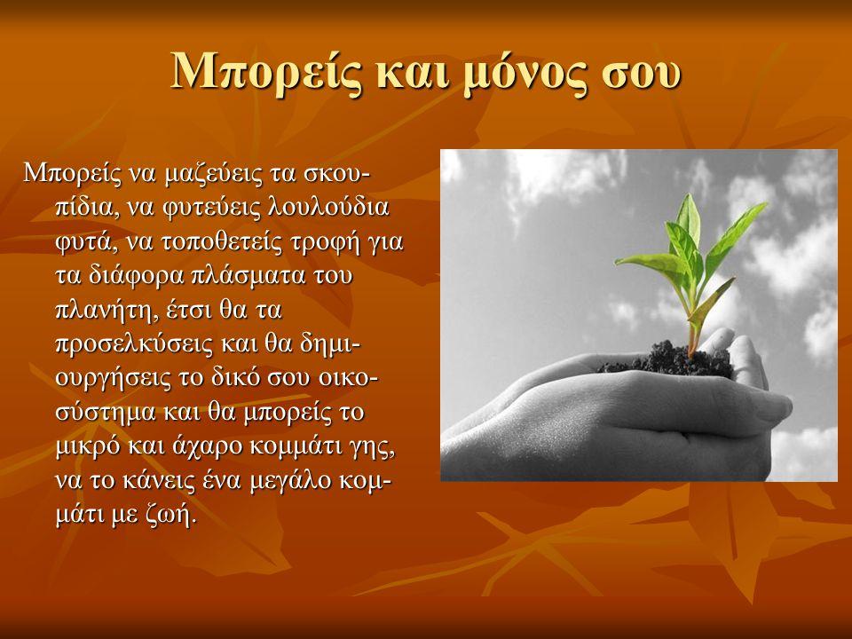 Μπορείς και μόνος σου Μπορείς να μαζεύεις τα σκου- πίδια, να φυτεύεις λουλούδια φυτά, να τοποθετείς τροφή για τα διάφορα πλάσματα του πλανήτη, έτσι θα τα προσελκύσεις και θα δημι- ουργήσεις το δικό σου οικο- σύστημα και θα μπορείς το μικρό και άχαρο κομμάτι γης, να το κάνεις ένα μεγάλο κομ- μάτι με ζωή.