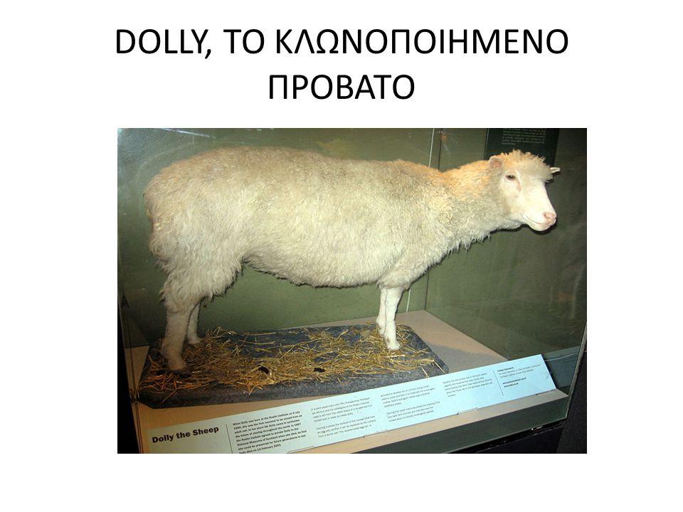 DOLLY, ΤΟ ΚΛΩΝΟΠΟΙΗΜΕΝΟ ΠΡΟΒΑΤΟ