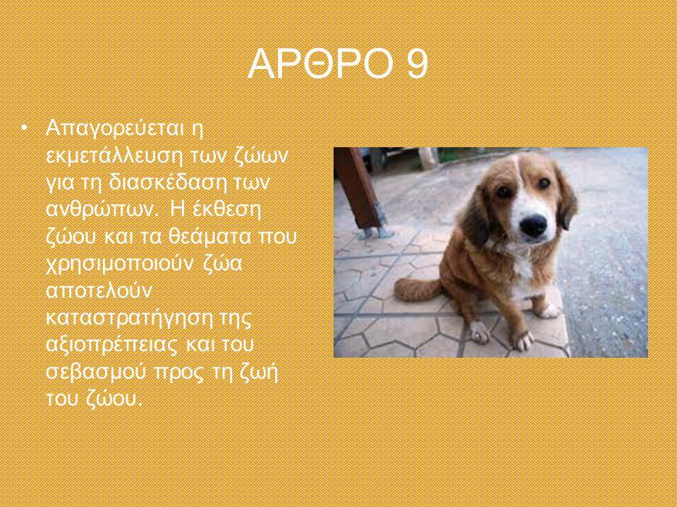 ΑΡΘΡΟ 9 Απαγορεύεται η εκμετάλλευση των ζώων για τη διασκέδαση των ανθρώπων.
