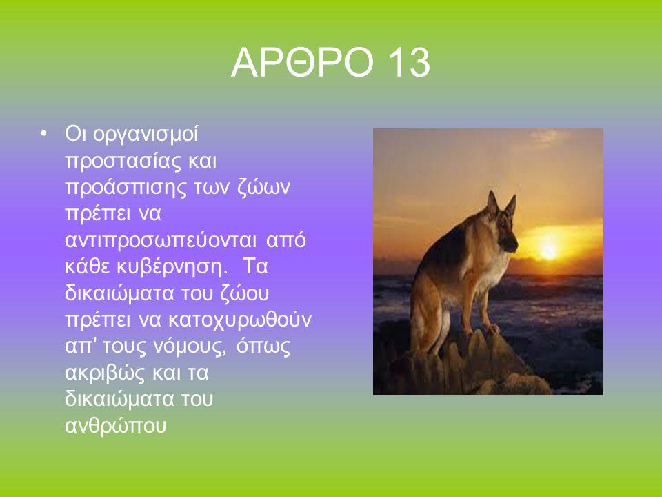 ΑΡΘΡΟ 13 Οι οργανισμοί προστασίας και προάσπισης των ζώων πρέπει να αντιπροσωπεύονται από κάθε κυβέρνηση.