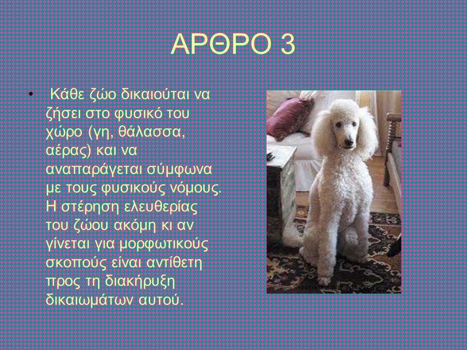 ΑΡΘΡΟ 4 Κάθε ζώο που από παράδοση θεωρείται κατοικίδιο δικαιούται να ζήσει με το ρυθμό και τις συνθήκες ζωής και ελευθερίας που αντιστοιχούν στο είδος του.