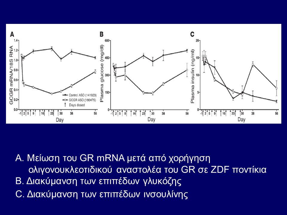 Α. Mείωση του GR mRNA μετά από χορήγηση ολιγονουκλεοτιδικού αναστολέα του GR σε ZDF ποντίκια Β. Διακύμανση των επιπέδων γλυκόζης C. Διακύμανση των επι