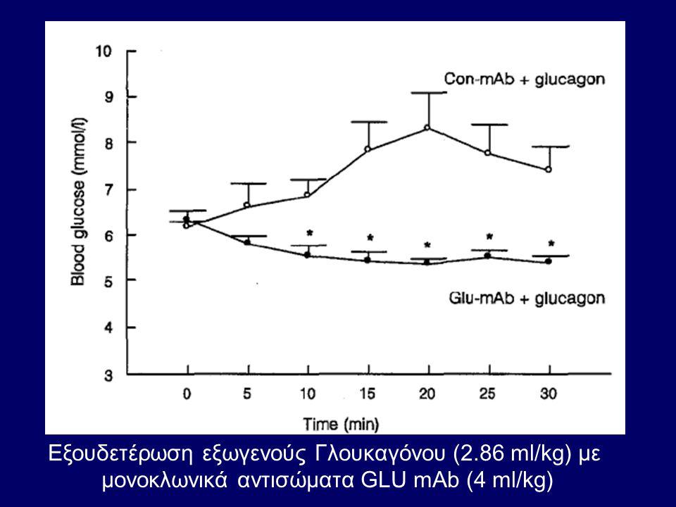 Εξουδετέρωση εξωγενούς Γλουκαγόνου (2.86 ml/kg) με μονοκλωνικά αντισώματα GLU mAb (4 ml/kg)
