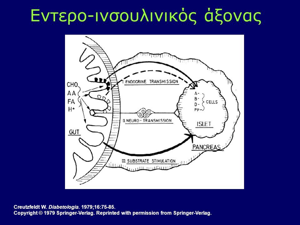 Creutzfeldt W. Diabetologia. 1979;16:75-85. Copyright © 1979 Springer-Verlag. Reprinted with permission from Springer-Verlag. Εντερο-ινσουλινικός άξον