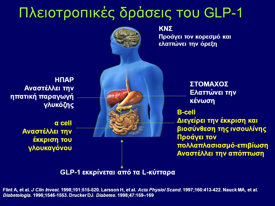 Πλειοτροπικές δράσεις του GLP-1 ΚΝΣ Προάγει τον κορεσμό και ελαττώνει την όρεξη ΣΤΟΜΑΧΟΣ Ελαττώνει την κένωση ΗΠΑΡ Αναστέλλει την ηπατική παραγωγή γλυ