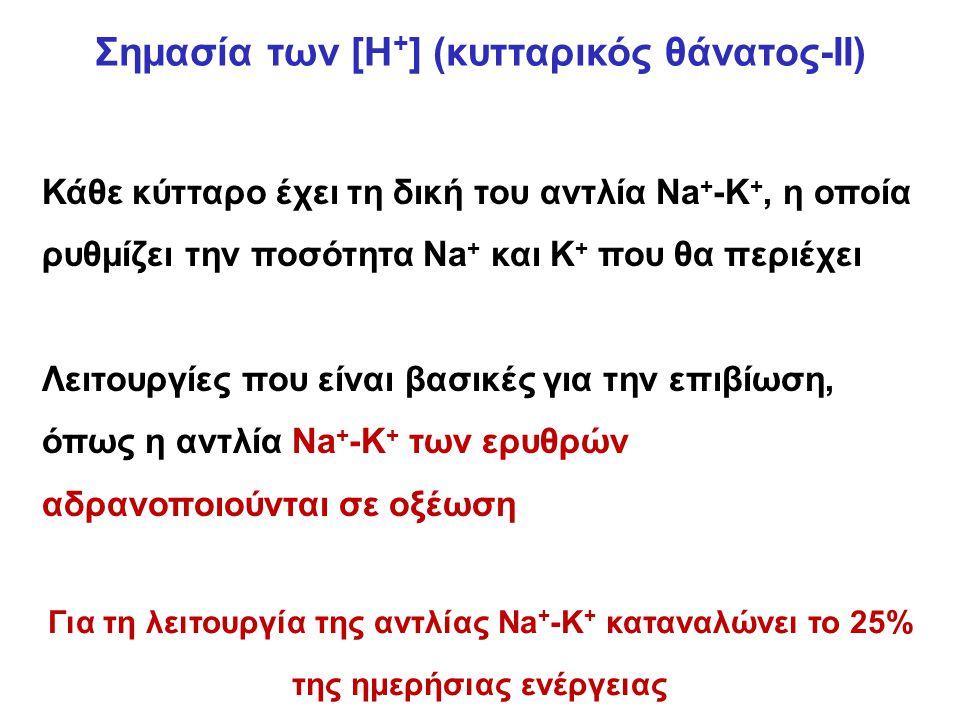 Σημασία των [Η + ] (κυτταρικός θάνατος-ΙΙ) Κάθε κύτταρο έχει τη δική του αντλία Na + -K +, η οποία ρυθμίζει την ποσότητα Νa + και K + που θα περιέχει Λειτουργίες που είναι βασικές για την επιβίωση, όπως η αντλία Na + -K + των ερυθρών αδρανοποιούνται σε οξέωση Για τη λειτουργία της αντλίας Na + -K + καταναλώνει το 25% της ημερήσιας ενέργειας