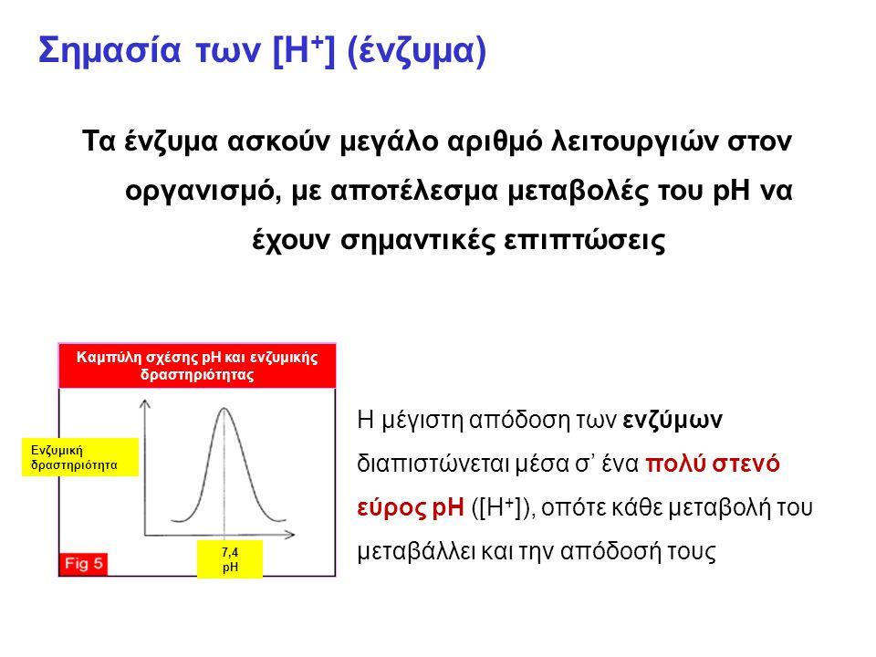 Σημασία των [Η + ] (ένζυμα) Τα ένζυμα ασκούν μεγάλο αριθμό λειτουργιών στον οργανισμό, με αποτέλεσμα μεταβολές του pH να έχουν σημαντικές επιπτώσεις Ενζυμική δραστηριότητα 7,4 pH Καμπύλη σχέσης pH και ενζυμικής δραστηριότητας Η μέγιστη απόδοση των ενζύμων διαπιστώνεται μέσα σ' ένα πολύ στενό εύρος pH ([Η + ]), οπότε κάθε μεταβολή του μεταβάλλει και την απόδοσή τους