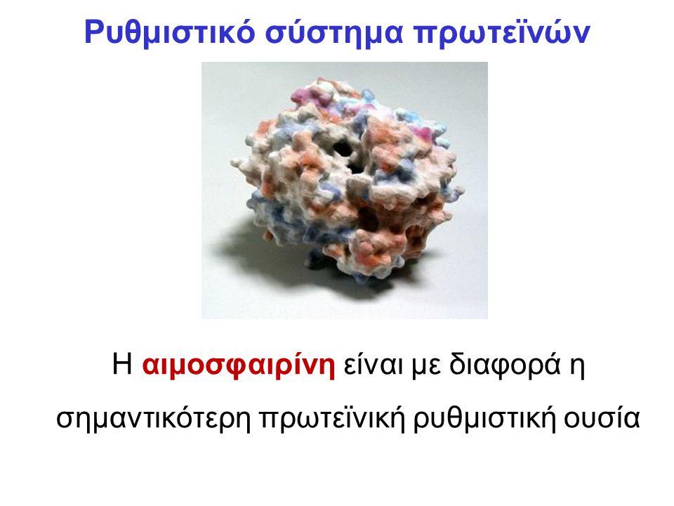 Ρυθμιστικό σύστημα πρωτεϊνών Η αιμοσφαιρίνη είναι με διαφορά η σημαντικότερη πρωτεϊνική ρυθμιστική ουσία