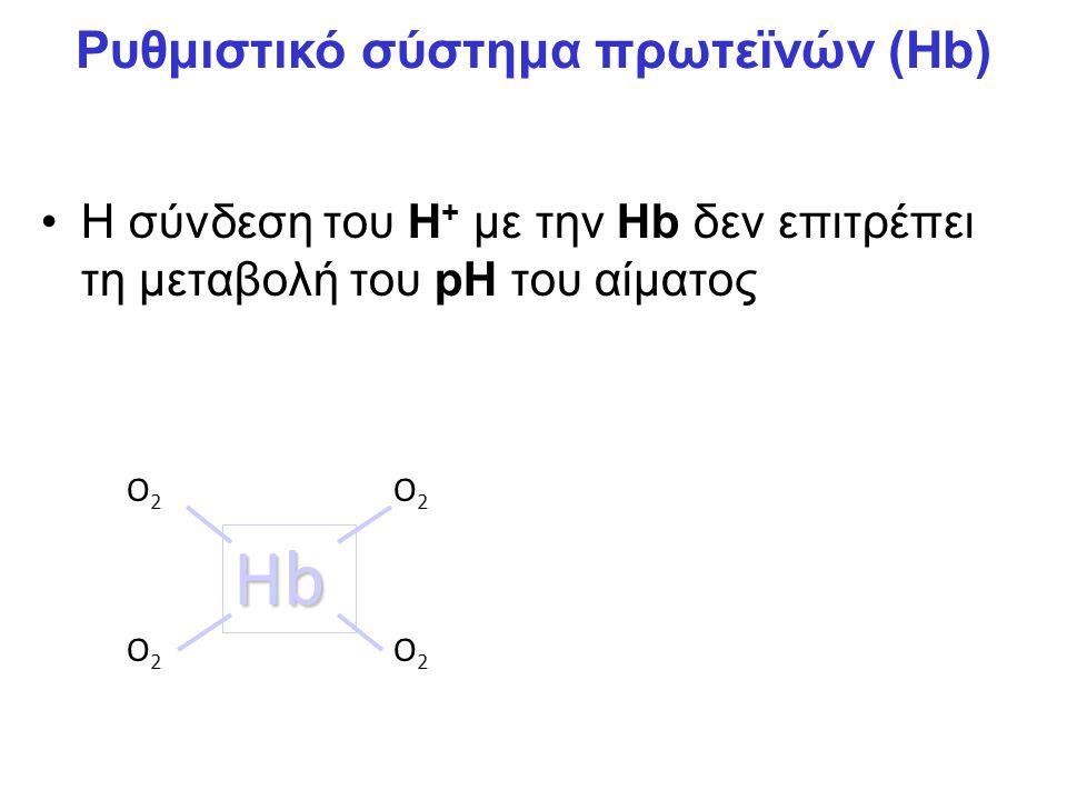Η σύνδεση του H + με την Hb δεν επιτρέπει τη μεταβολή του pH του αίματος Hb O2O2 O2O2 O2O2 O2O2 H+H+ Ρυθμιστικό σύστημα πρωτεϊνών (Hb)