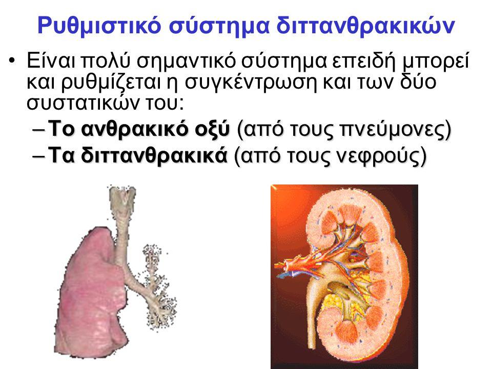 Είναι πολύ σημαντικό σύστημα επειδή μπορεί και ρυθμίζεται η συγκέντρωση και των δύο συστατικών του: –Το ανθρακικό οξύ (από τους πνεύμονες) –Τα διττανθρακικά (από τους νεφρούς) Ρυθμιστικό σύστημα διττανθρακικών
