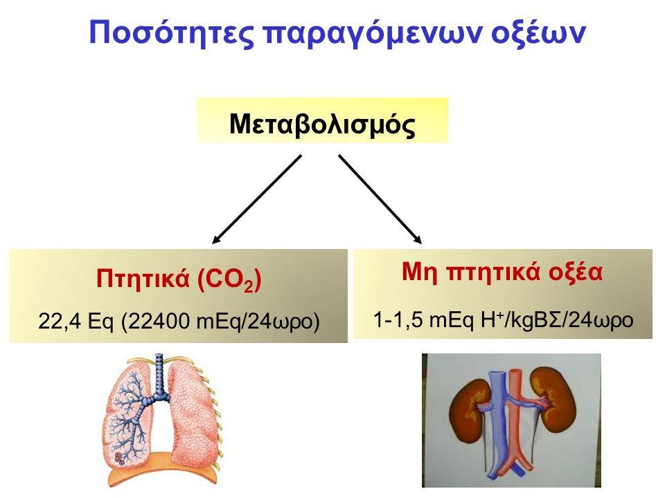 Φυσιολογικές τιμές pH-I pH[H + ] Φυσιολογικές τιμές7,4040x10 -6 mEq/L Φυσιολογικά όρια7,37-7,4343-37x10 -6 mEq/L Όρια συμβατά με ζωή6,8-7,8159-15x10 -6 mEq/L Το pH είναι ένας τρόπος έκφρασης άκρως μικρών συγκεντρώσεων ενός οξέος σ' ένα διάλυμα