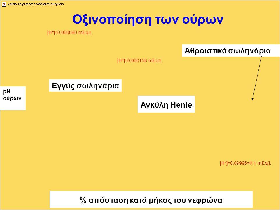 Οξινοποίηση των ούρων % απόσταση κατά μήκος του νεφρώνα pH ούρων Εγγύς σωληνάρια Αγκύλη Henle Αθροιστικά σωληνάρια [Η + ]=0,000040 mEq/L [Η + ]=0,09995=0,1 mEq/L [Η + ]=0,000158 mEq/L