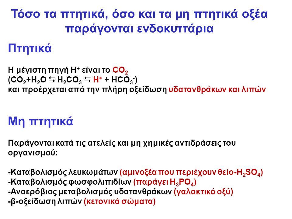 Πτητικά Η μέγιστη πηγή Η + είναι το CO 2 (CO 2 +H 2 O  H 2 CO 3  H + + HCO 3 - ) και προέρχεται από την πλήρη οξείδωση υδατανθράκων και λιπών Μη πτητικά Παράγονται κατά τις ατελείς και μη χημικές αντιδράσεις του οργανισμού: -Καταβολισμός λευκωμάτων (αμινοξέα που περιέχουν θείο-H 2 SO 4 ) -Καταβολισμός φωσφολιπιδίων (παράγει H 3 PO 4 ) -Αναερόβιος μεταβολισμός υδατανθράκων (γαλακτικό οξύ) -β-οξείδωση λιπών (κετονικά σώματα) Τόσο τα πτητικά, όσο και τα μη πτητικά οξέα παράγονται ενδοκυττάρια