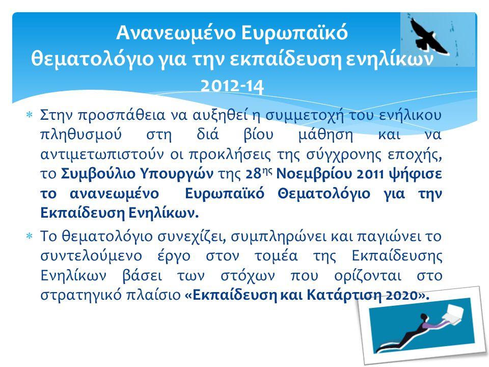  Στην προσπάθεια να αυξηθεί η συμμετοχή του ενήλικου πληθυσμού στη διά βίου μάθηση και να αντιμετωπιστούν οι προκλήσεις της σύγχρονης εποχής, το Συμβούλιο Υπουργών της 28 ης Νοεμβρίου 2011 ψήφισε το ανανεωμένο Ευρωπαϊκό Θεματολόγιο για την Εκπαίδευση Ενηλίκων.