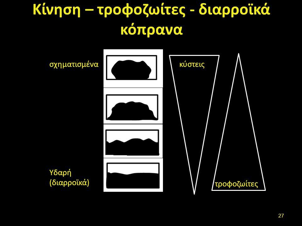Κίνηση – τροφοζωίτες - διαρροϊκά κόπρανα σχηματισμένα Υδαρή (διαρροϊκά) κύστεις τροφοζωίτες 27