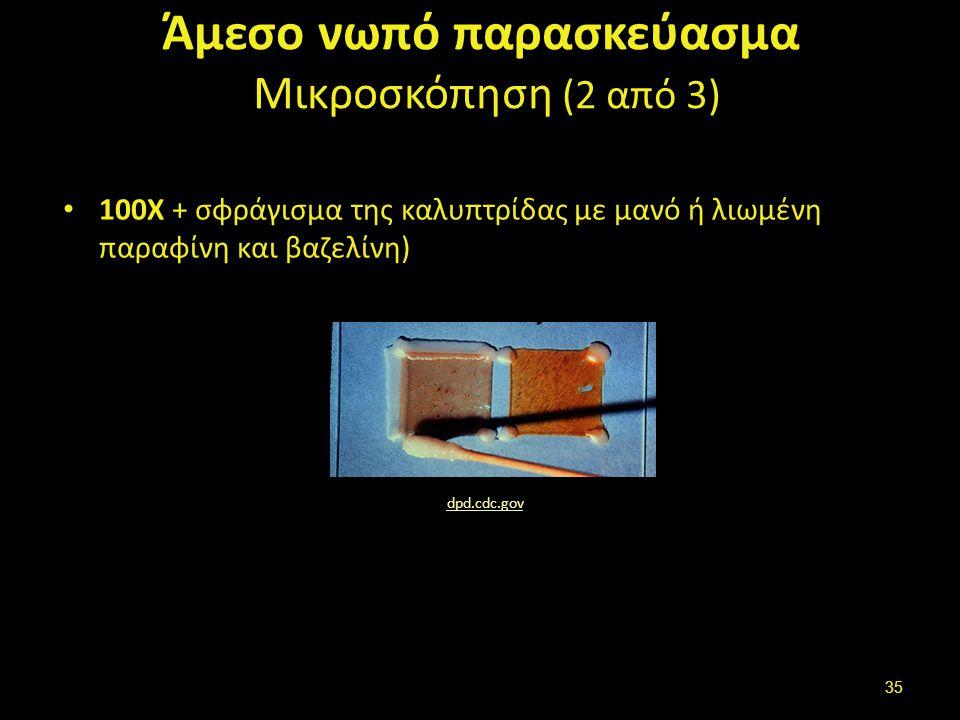 Άμεσο νωπό παρασκεύασμα Μικροσκόπηση (2 από 3) 100Χ + σφράγισμα της καλυπτρίδας με μανό ή λιωμένη παραφίνη και βαζελίνη) dpd.cdc.gov 35