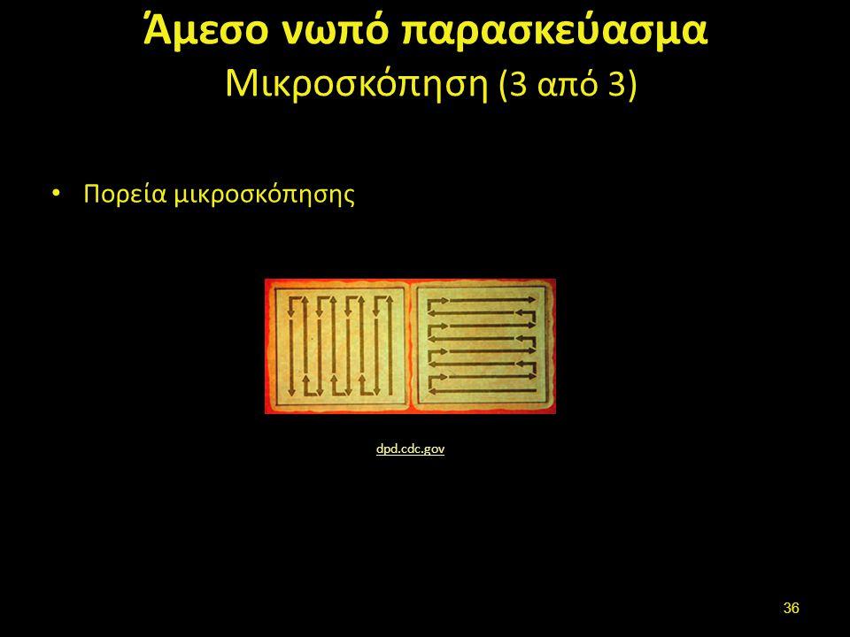 Άμεσο νωπό παρασκεύασμα Μικροσκόπηση (3 από 3) Πορεία μικροσκόπησης dpd.cdc.gov 36