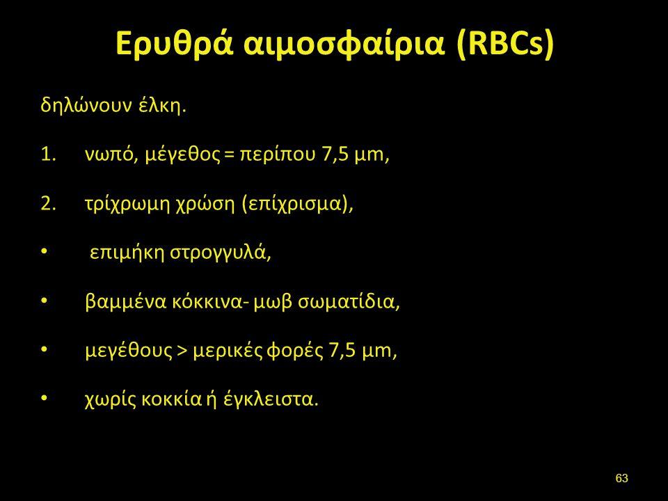 Ερυθρά αιμοσφαίρια (RBCs) δηλώνουν έλκη. 1.νωπό, μέγεθος = περίπου 7,5 μm, 2.τρίχρωμη χρώση (επίχρισμα), επιμήκη στρογγυλά, βαμμένα κόκκινα- μωβ σωματ