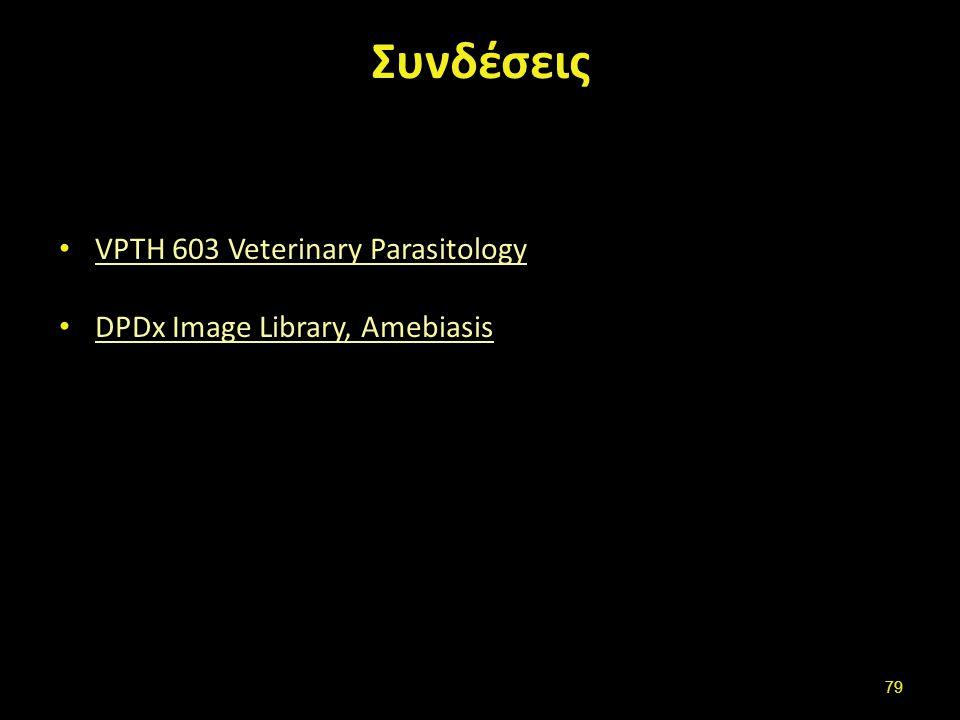Συνδέσεις VPTH 603 Veterinary Parasitology DPDx Image Library, Amebiasis 79