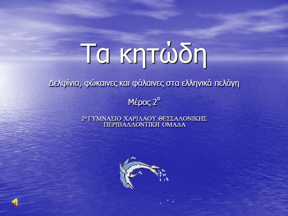 Τα κητώδη Δελφίνια, φώκαινες και φάλαινες στα ελληνικά πελάγη Μέρος 2 ο 2 ο ΓΥΜΝΑΣΙΟ ΧΑΡΙΛΑΟΥ ΘΕΣΣΑΛΟΝΙΚΗΣ ΠΕΡΙΒΑΛΛΟΝΤΙΚΗ ΟΜΑΔΑ Δελφίνια, φώκαινες και φάλαινες στα ελληνικά πελάγη Μέρος 2 ο 2 ο ΓΥΜΝΑΣΙΟ ΧΑΡΙΛΑΟΥ ΘΕΣΣΑΛΟΝΙΚΗΣ ΠΕΡΙΒΑΛΛΟΝΤΙΚΗ ΟΜΑΔΑ