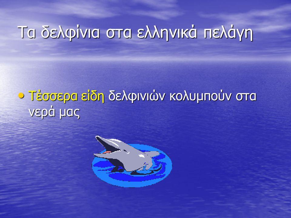 Τα κητώδη Δελφίνια, φώκαινες και φάλαινες στα ελληνικά πελάγη Μέρος 2 ο 2 ο ΓΥΜΝΑΣΙΟ ΧΑΡΙΛΑΟΥ ΘΕΣΣΑΛΟΝΙΚΗΣ ΠΕΡΙΒΑΛΛΟΝΤΙΚΗ ΟΜΑΔΑ Δελφίνια, φώκαινες και