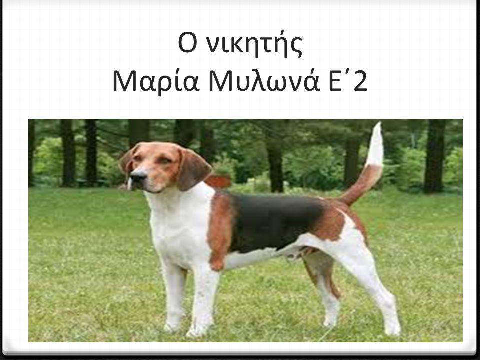 Ο νικητής Μαρία Μυλωνά Ε΄2