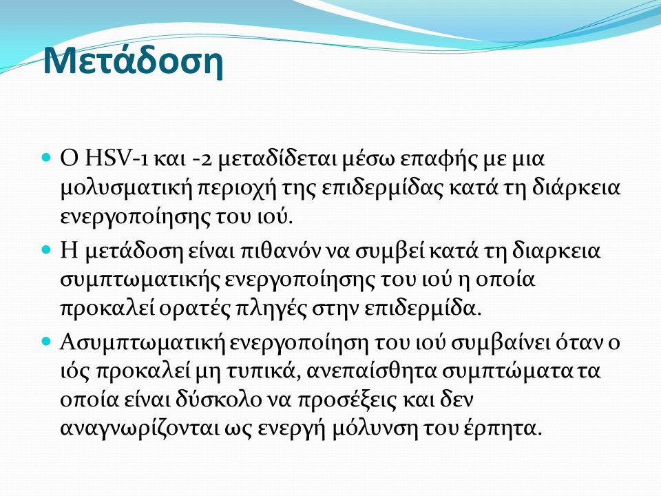 Ο HSV-1 μεταδίδεται στοματικώς κατά την παιδική ηλικία αλλά μπορεί να μεταδοθεί και σεξουαλικά.