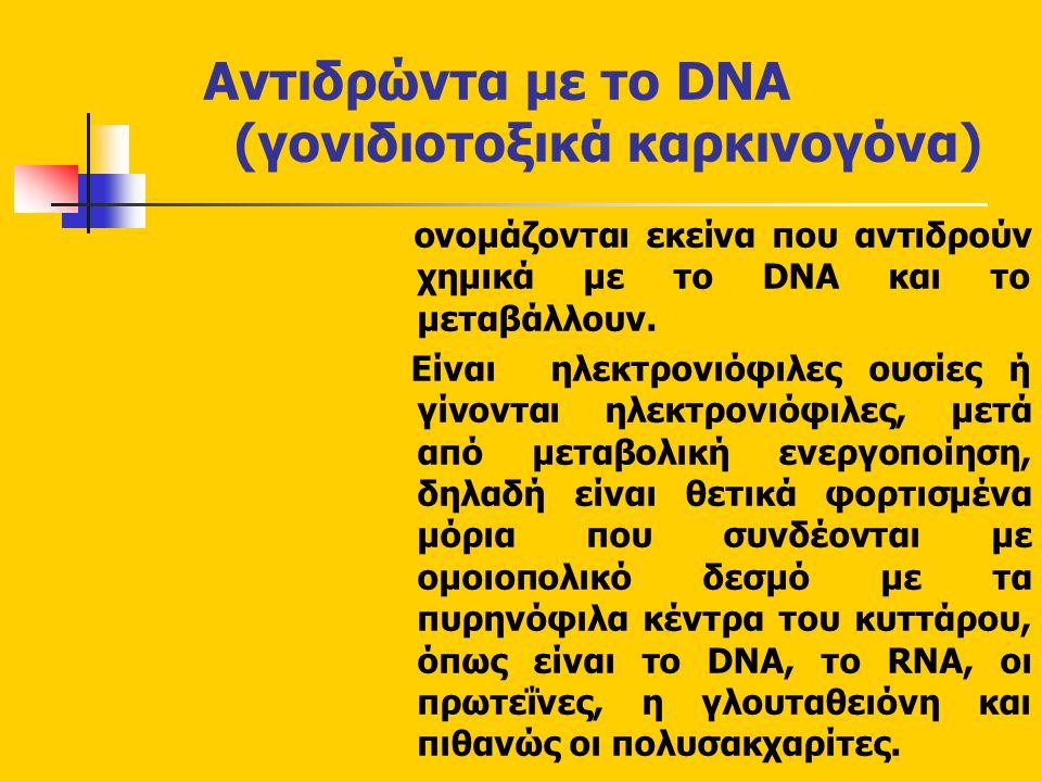 Αντιδρώντα με το DNA (γονιδιοτοξικά καρκινογόνα) ονομάζονται εκείνα που αντιδρούν χημικά με το DNA και το μεταβάλλουν.