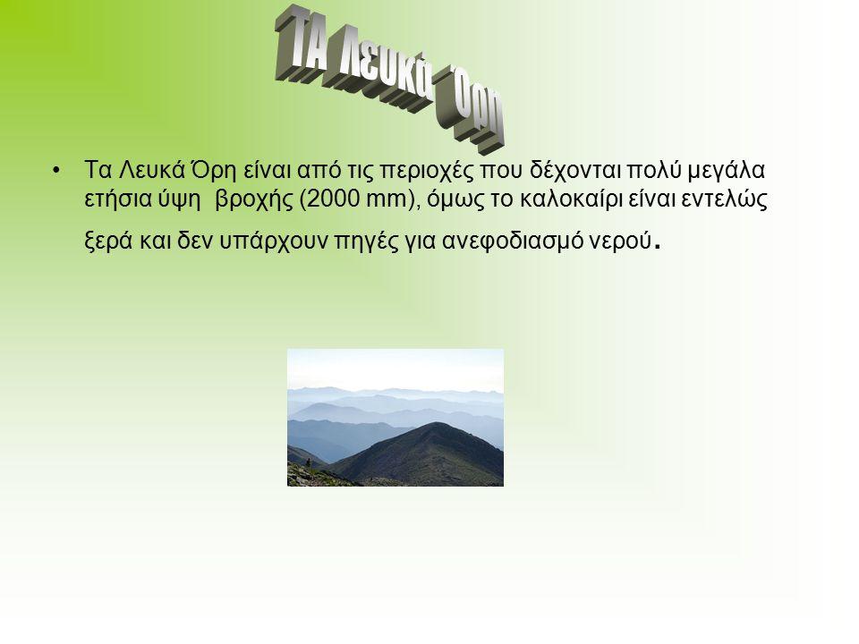 Τα Λευκά Όρη είναι από τις περιοχές που δέχονται πολύ μεγάλα ετήσια ύψη βροχής (2000 mm), όμως το καλοκαίρι είναι εντελώς ξερά και δεν υπάρχουν πηγές