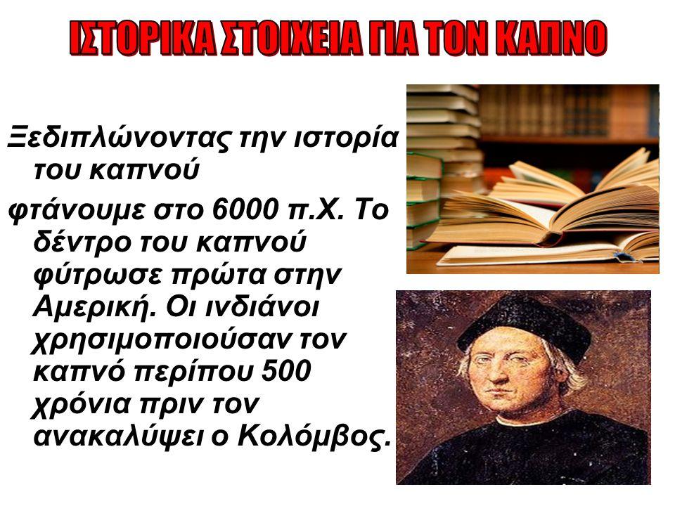  Η εισαγωγή του στην Ευρώπη έγινε το 1556 μ.Χ όταν έφτασε στη Γαλλία,στην Πορτογαλία και αργότερα στην Ισπανία.