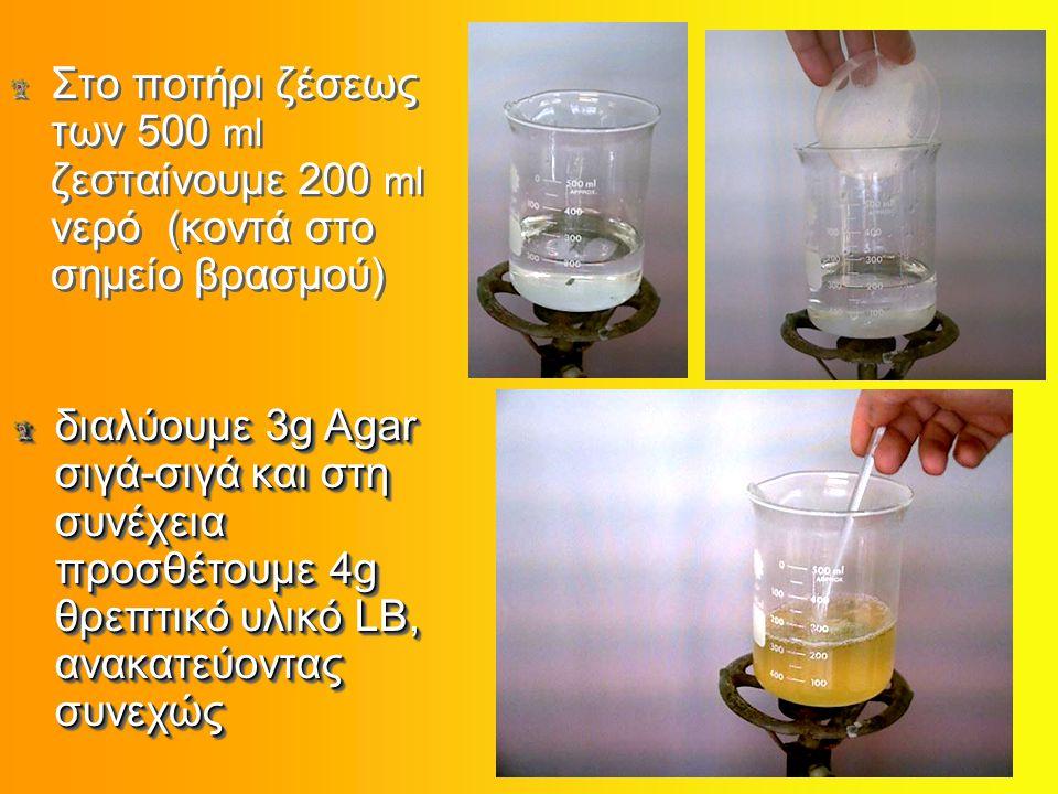 Στο ποτήρι ζέσεως των 500 ml ζεσταίνουμε 200 ml νερό (κοντά στο σημείο βρασμού) διαλύουμε 3g Agar σιγά-σιγά και στη συνέχεια προσθέτουμε 4g θρεπτικό υλικό LB, ανακατεύοντας συνεχώς