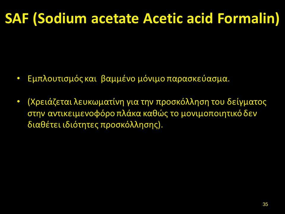 SAF (Sodium acetate Acetic acid Formalin) Εμπλουτισμός και βαμμένο μόνιμο παρασκεύασμα. (Χρειάζεται λευκωματίνη για την προσκόλληση του δείγματος στην