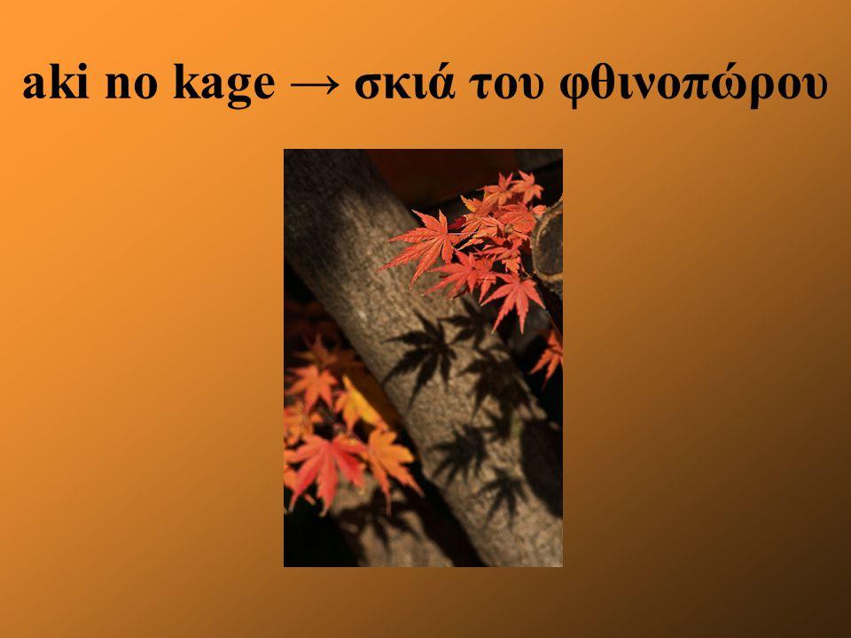 aki no kage → σκιά του φθινοπώρου