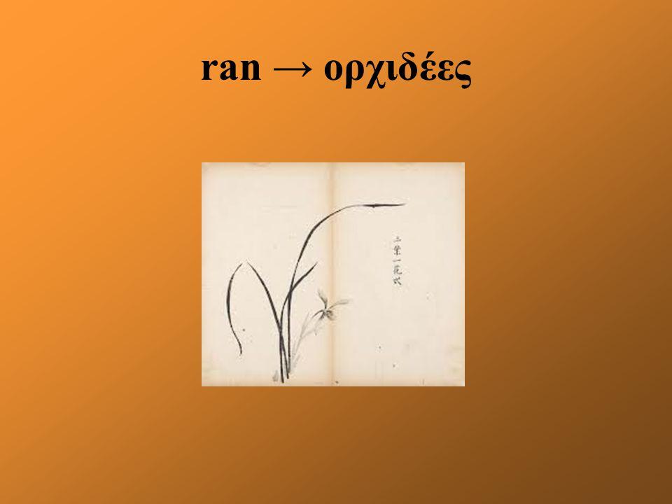 ran → ορχιδέες
