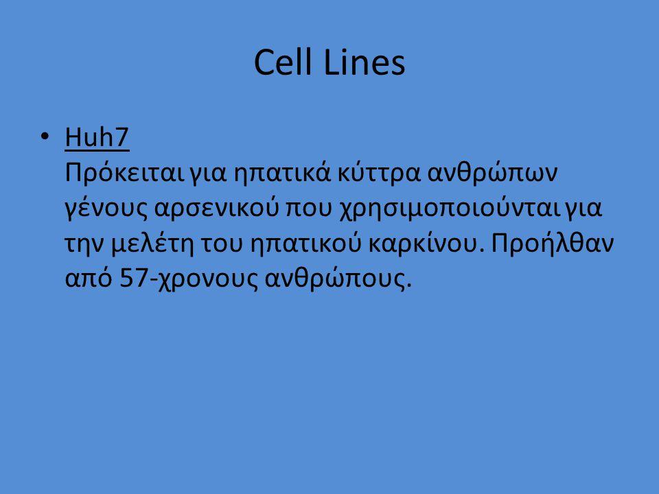 Cell Lines Huh7 Πρόκειται για ηπατικά κύττρα ανθρώπων γένους αρσενικού που χρησιμοποιούνται για την μελέτη του ηπατικού καρκίνου.