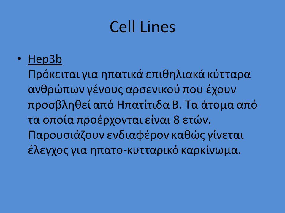 Cell Lines Hep3b Πρόκειται για ηπατικά επιθηλιακά κύτταρα ανθρώπων γένους αρσενικού που έχουν προσβληθεί από Ηπατίτιδα Β.
