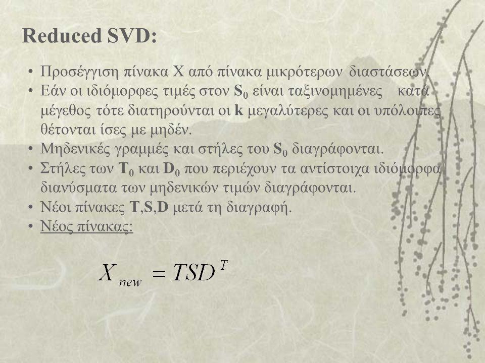 Reduced SVD: Προσέγγιση πίνακα X από πίνακα μικρότερων διαστάσεων.