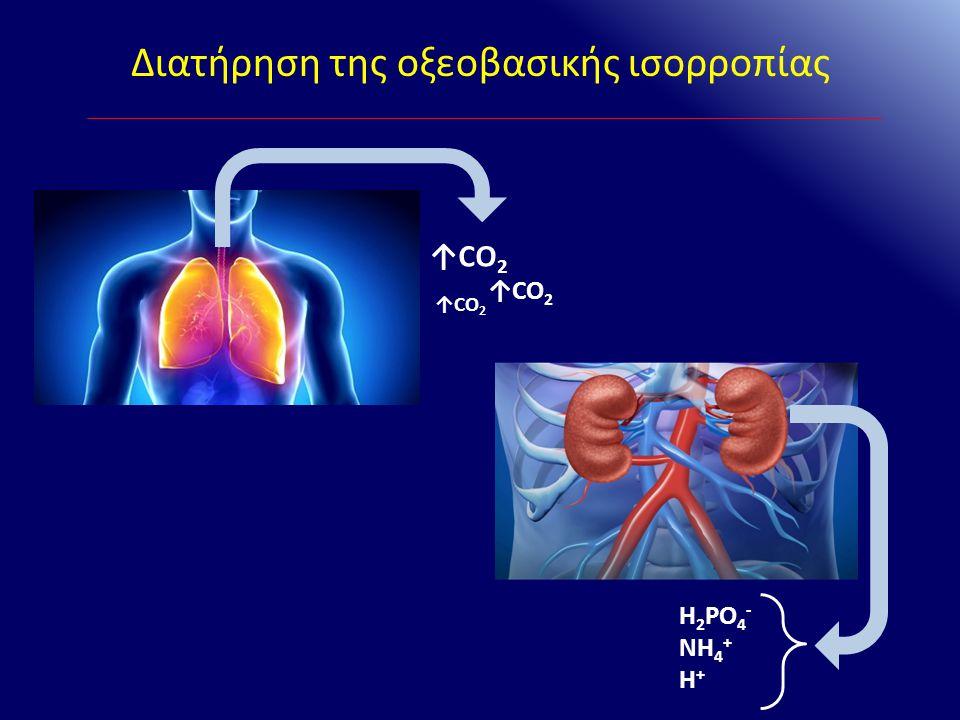 Ερμηνεία αερίων αίματος – Παράδειγμα 1 Εργαστηριακά pH: 7,1 HCO 3 - : 5mEq/L PaCO 2 : 16mmHg Na + : 134mEq/L Cl - : 80mEq/L ΑΣΘΕΝΗΣ 22 ΕΤΩΝ ΣΤΟ ΤΕΠ ΠΑΡΟΥΣΙΑΖΕΙ ΕΜΕΤΟΥΣ & ΥΠΕΡΠΝΟΙΑ 2 ο ΒΗΜΑ Πρωτοπαθής διαταραχή: Οξυαιμία Μεταβολική οξέωση 3 ο ΒΗΜΑ Αντιρρόπηση: 40 - 1,2x(24-5) = 17,2mmHg 4 ο ΒΗΜΑ XA: 134 – (90+5) = 39mEq/L Άρα ΜΟ με αυξημένο ΧΑ 5 ο ΒΗΜΑ ΔX = 134 – 80 – 39 =15 mEq/L Άρα συνυπάρχει και μεταβολική αλκάλωση Διάγνωση: Διαβητική κετοξέωση με συνυπάρχουσα MA εξαιτίας των εμέτων Σάκχαρο: 360mg/dl Κετόνες ούρων: +++