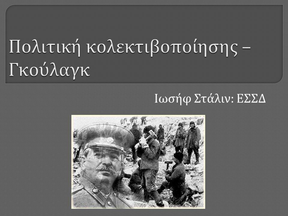 Ιωσήφ Στάλιν : ΕΣΣΔ