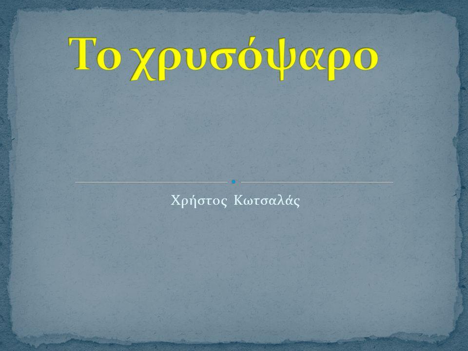 Xρήστος Κωτσαλάς