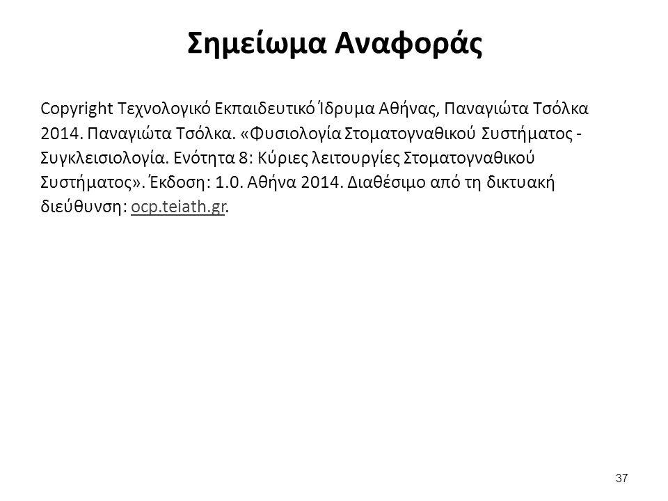 Σημείωμα Αναφοράς Copyright Τεχνολογικό Εκπαιδευτικό Ίδρυμα Αθήνας, Παναγιώτα Τσόλκα 2014. Παναγιώτα Τσόλκα. «Φυσιολογία Στοματογναθικού Συστήματος -