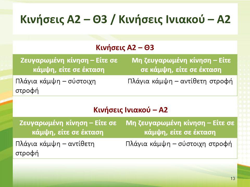 Κινήσεις Α2 – Θ3 / Κινήσεις Ινιακού – Α2 Κινήσεις Α2 – Θ3 13 Ζευγαρωμένη κίνηση – Είτε σε κάμψη, είτε σε έκταση Μη ζευγαρωμένη κίνηση – Είτε σε κάμψη,