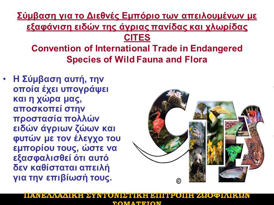 Σύμβαση για το Διεθνές Εμπόριο των απειλουμένων με εξαφάνιση ειδών της άγριας πανίδας και χλωρίδας CITES Convention of International Trade in Endangered Species of Wild Fauna and Flora H Σύμβαση αυτή, την οποία έχει υπογράψει και η χώρα μας, αποσκοπεί στην προστασία πολλών ειδών άγριων ζώων και φυτών με τον έλεγχο του εμπορίου τους, ώστε να εξασφαλισθεί ότι αυτό δεν καθίσταται απειλή για την επιβίωσή τους.