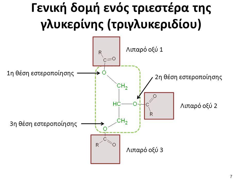 Γενική δομή ενός τριεστέρα της γλυκερίνης (τριγλυκεριδίου) Λιπαρό οξύ 1 Λιπαρό οξύ 2 Λιπαρό οξύ 3 1η θέση εστεροποίησης 2η θέση εστεροποίησης 3η θέση εστεροποίησης 7